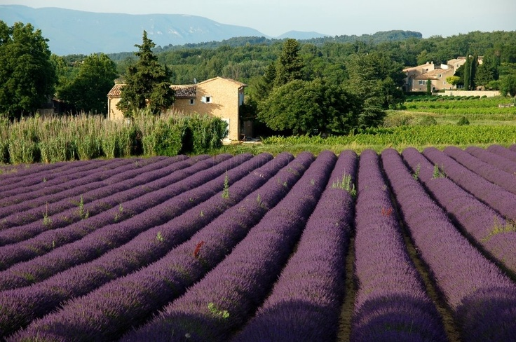 15 Tips for Your Trip to France