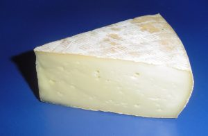 SNaint-Nectaire cheese, French cheese, France travel, French cuisine
