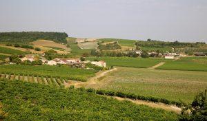 Cognac, France travel, Cognac tours, Cognac distilleries, western France